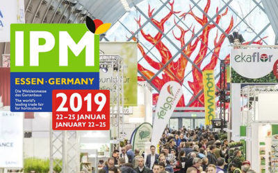 PREVIEW IPM Essen 2019