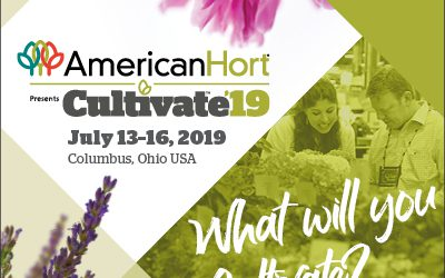AVANCE Cultivate'19