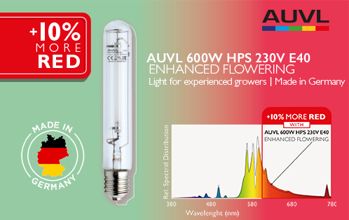 The new lamp for flowering – 600W HPS Enhanced Flowering